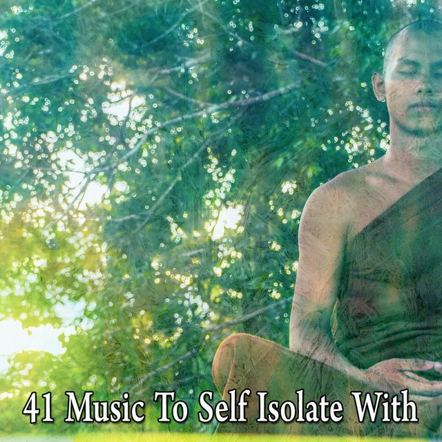 41 Music to Self Isolate With