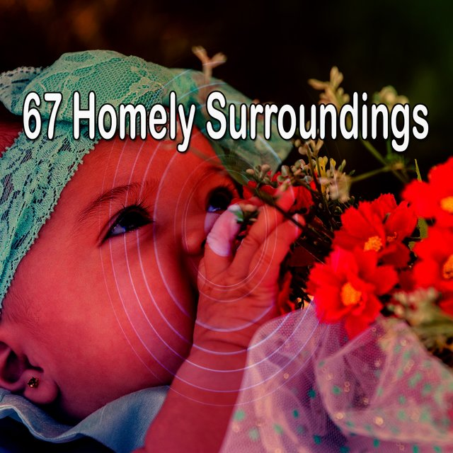 67 Homely Surroundings