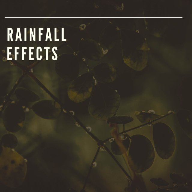 Relaxing Rainfall Sleep Effects