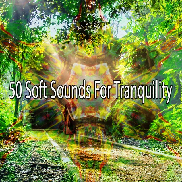 50 Soft Sounds for Tranquility