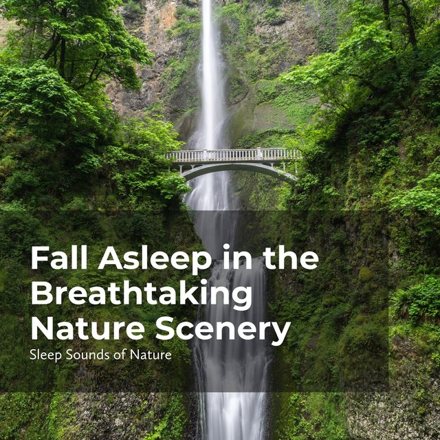 Fall Asleep in the Breathtaking Nature Scenery