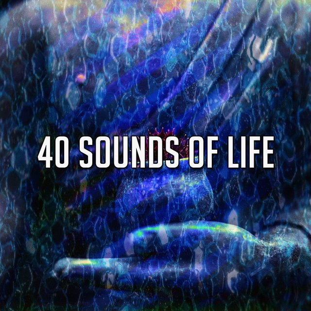 40 Sounds of Life