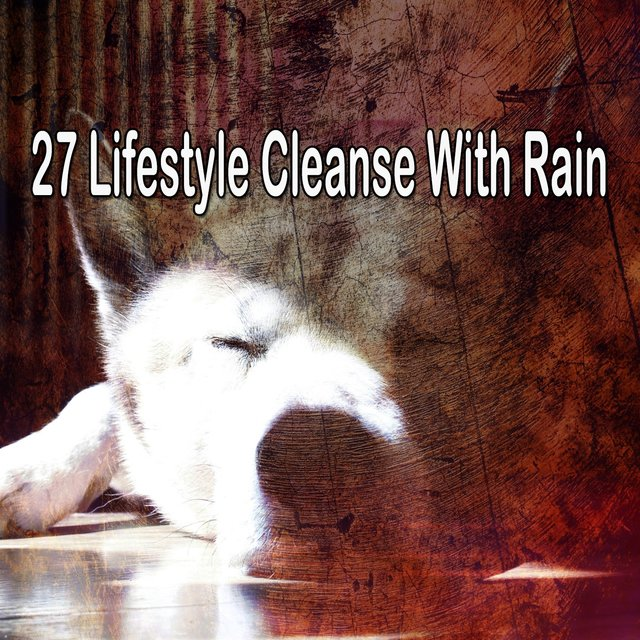 27 Lifestyle Cleanse with Rain