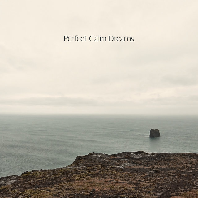 Perfect Calm Dreams - Music for Good Sleep & Relax