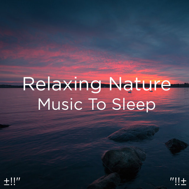 Relaxing Nature Music To Sleep