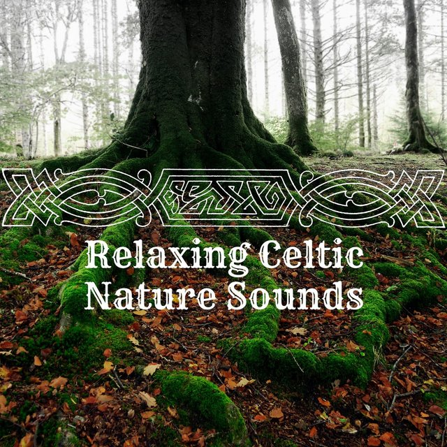 Relaxing Celtic Nature Sounds