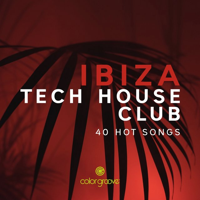 Ibiza Tech House Club (40 Hot Songs)