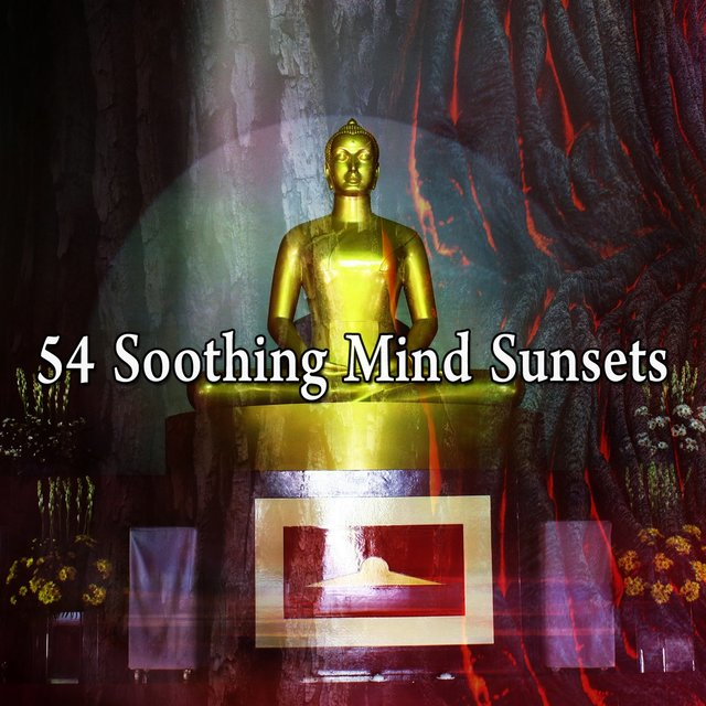 54 Soothing Mind Sunsets