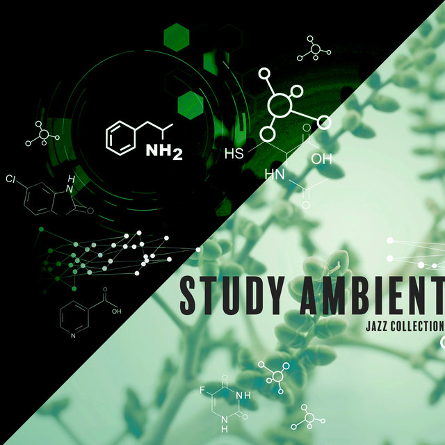Study Ambient Jazz Collection – Jazz Music for Learning, Chilled Instrumental Sounds, Study Jazz