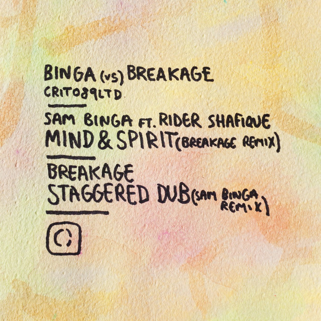 Binga vs Breakage