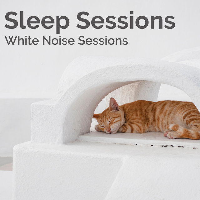 Sleep Sessions
