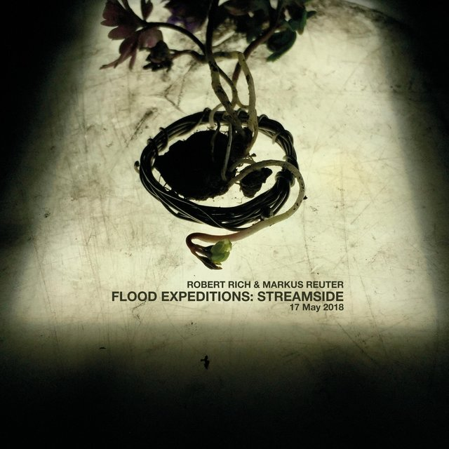 Cover art for album Flood Expeditions: Streamside, 17 May 2018 by Robert Rich & Markus Reuter
