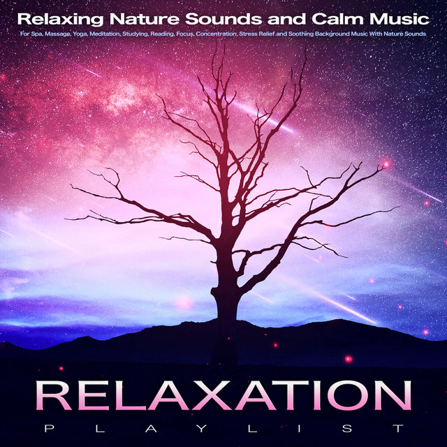 Relaxation Playlist: Relaxing Nature Sounds and Calm Music For Spa, Massage, Yoga, Meditation, Studying, Reading, Focus, Concentration, Stress Relief and Soothing Background Music With Nature Sounds