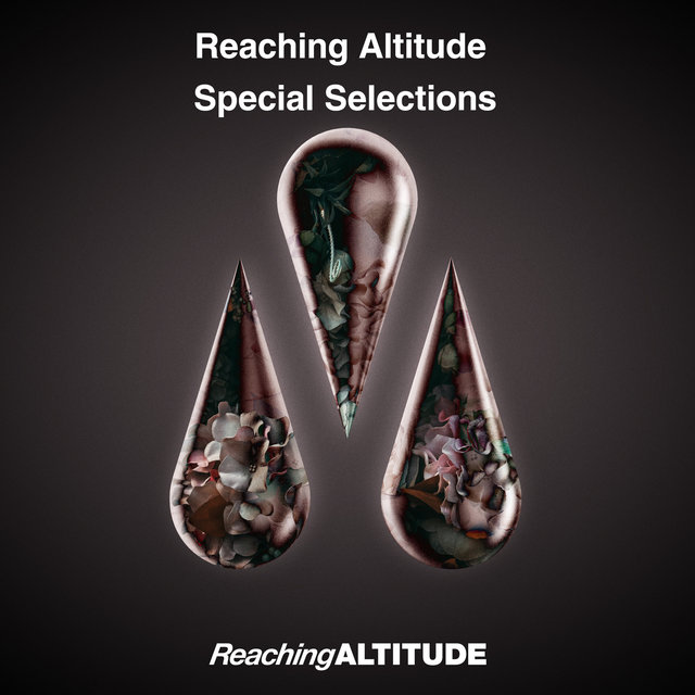 Reaching Altitude Special Selections