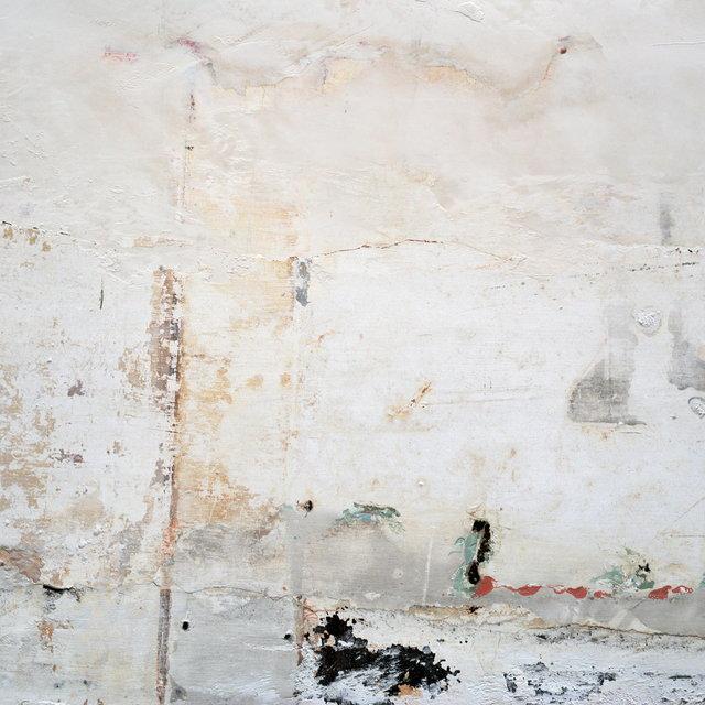 Cover art for album The Mansion by Brett Naucke