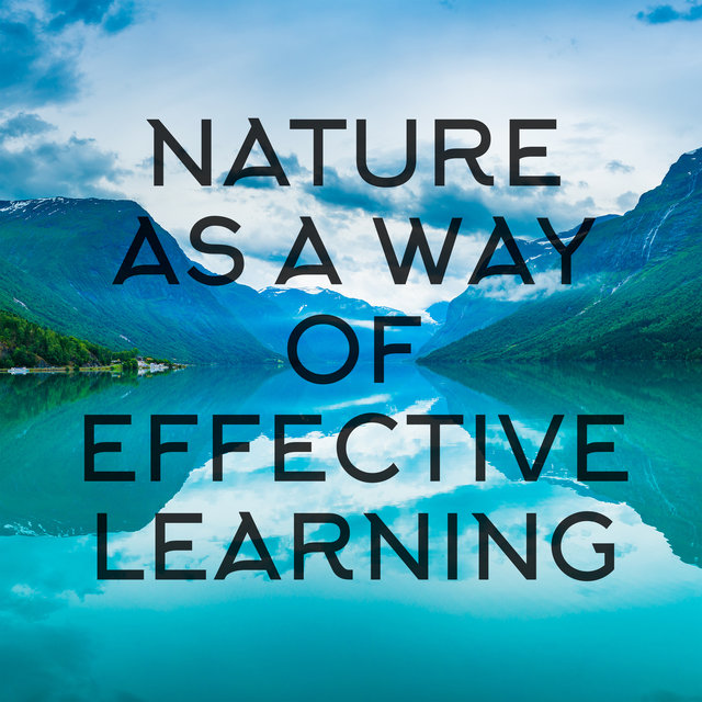 Nature as a Way of Effective Learning