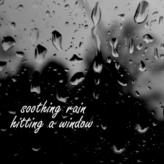 Soothing Rain Hitting a Window