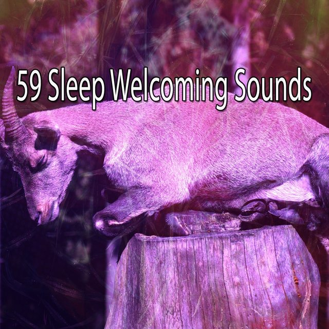 59 Sleep Welcoming Sounds