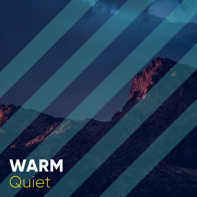 # 1 Album: Warm Quiet