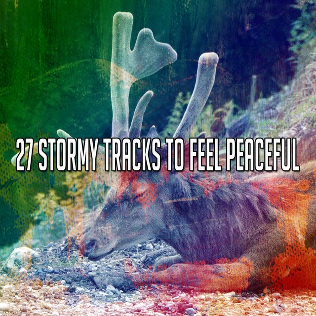 27 Stormy Tracks To Feel Peaceful