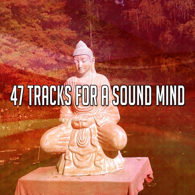 47 Tracks for a Sound Mind