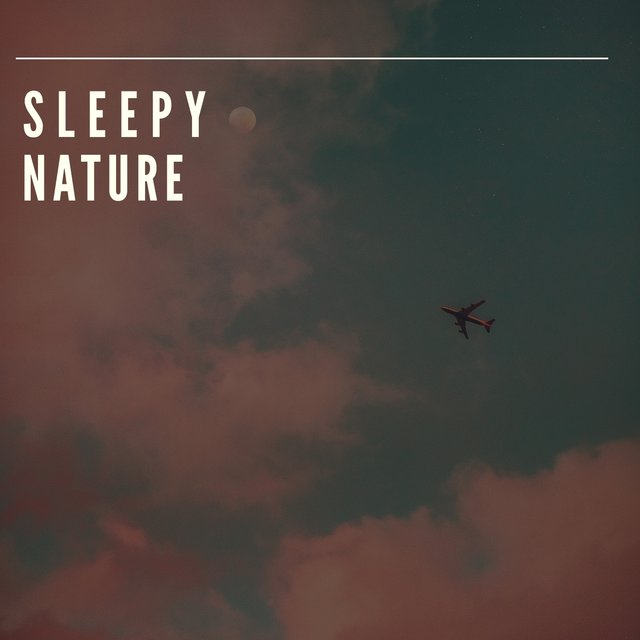 # Sleepy Nature