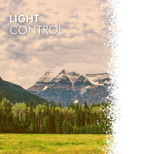 # 1 Album: Light Control