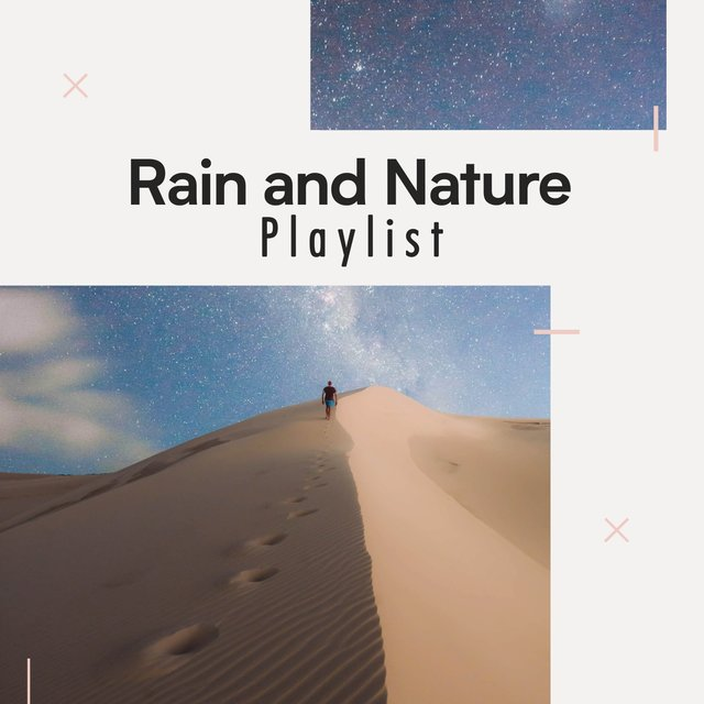 Looping Tranquil Rain and Nature Playlist