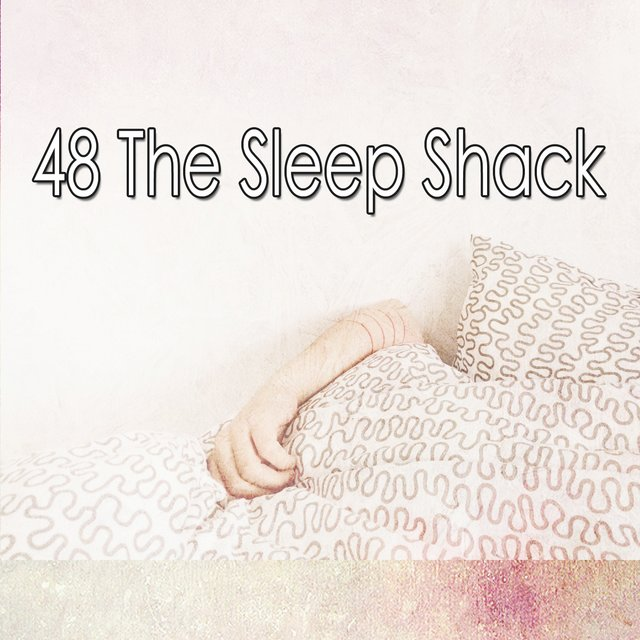 48 The Sleep Shack
