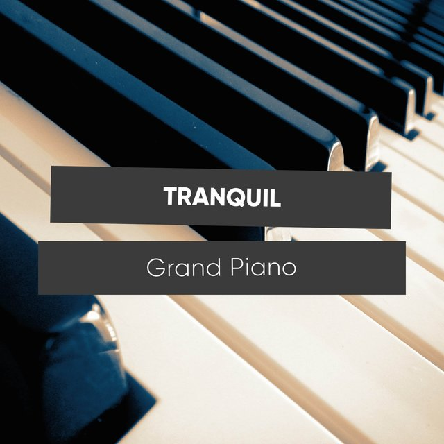 Tranquil Dinner Party Grand Piano Chords