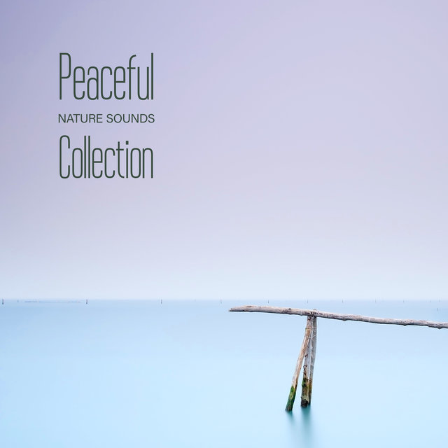 Peaceful Nature Sounds Collection - Inspirational New Age Songs Great for Relaxation, Meditation, Yoga or Sleep