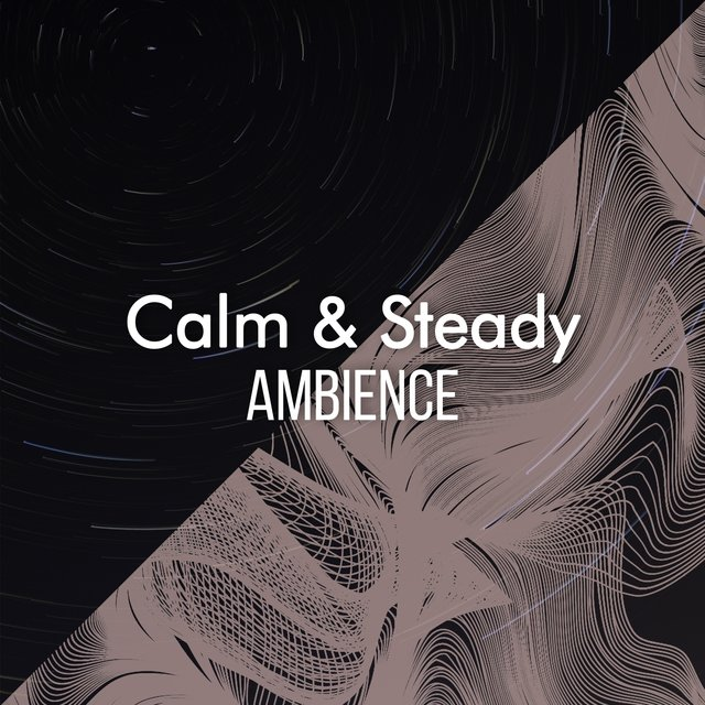 """Calm & Steady Ambience"""