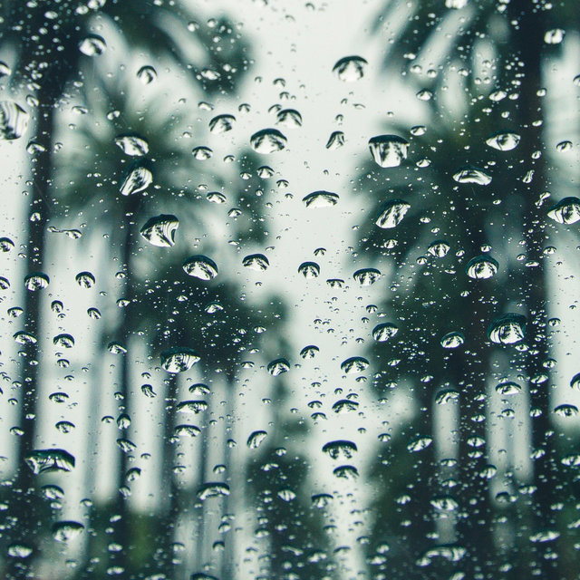 2020 Spring: Gorgeous Rain Sounds - Perfect Music for Sleep
