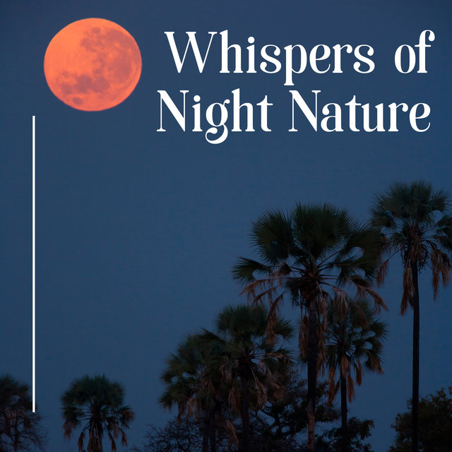 Whispers of Night Nature – Relaxing Nature Soundscapes, Feel Harmony and Balance with Mother Nature