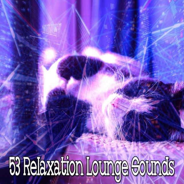 53 Relaxation Lounge Sounds
