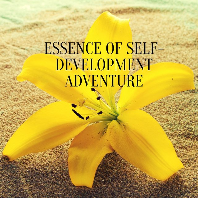 Essence of Self-Development Adventure - More Confident, More Fulfilled, More Enlightened Version of Yourself