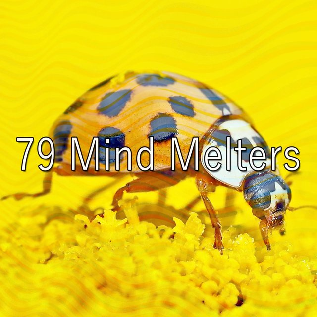 79 Mind Melters