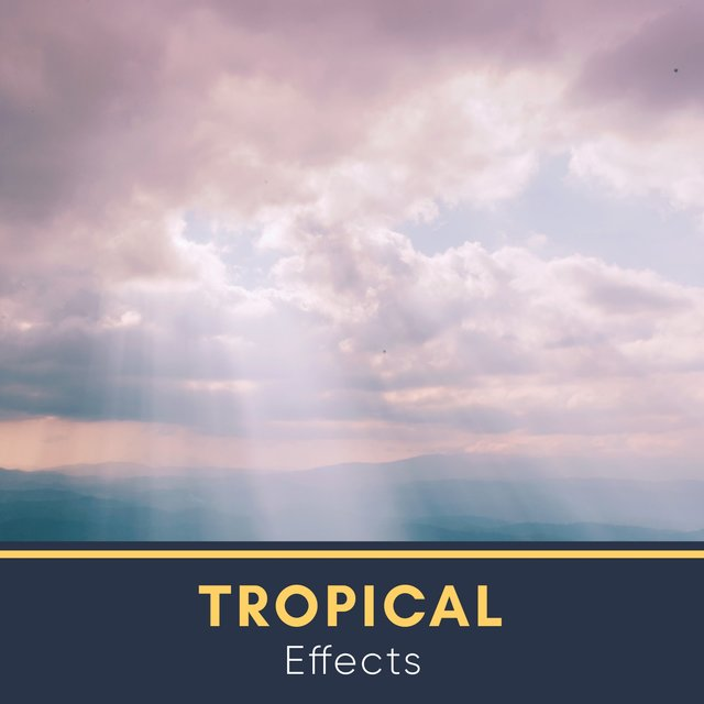 # 1 Album: Tropical Effects