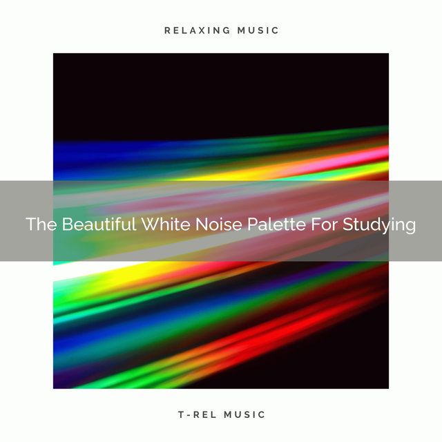 The Beautiful White Noise Palette For Studying
