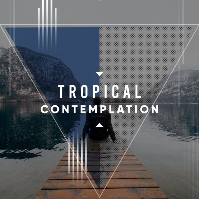 #Tropical Contemplation