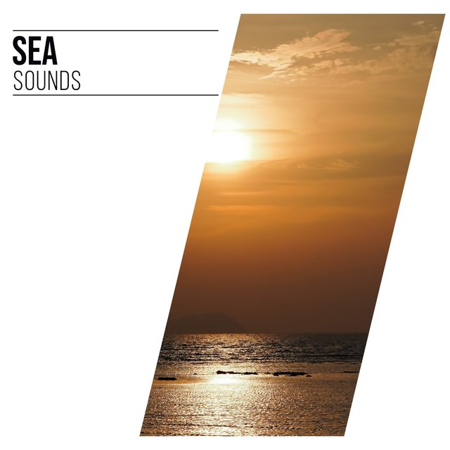 # Sea Sounds