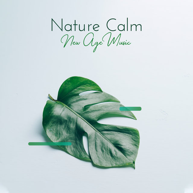Nature Calm New Age Music: Compilation of Songs for Total Relax, Ambient Music Perfect to Wake Up with Positive Attitude, Gentle Nature Sounds