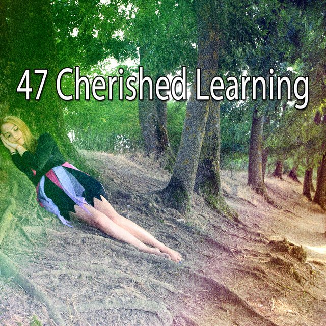 47 Cherished Learning