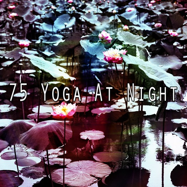 75 Yoga at Night