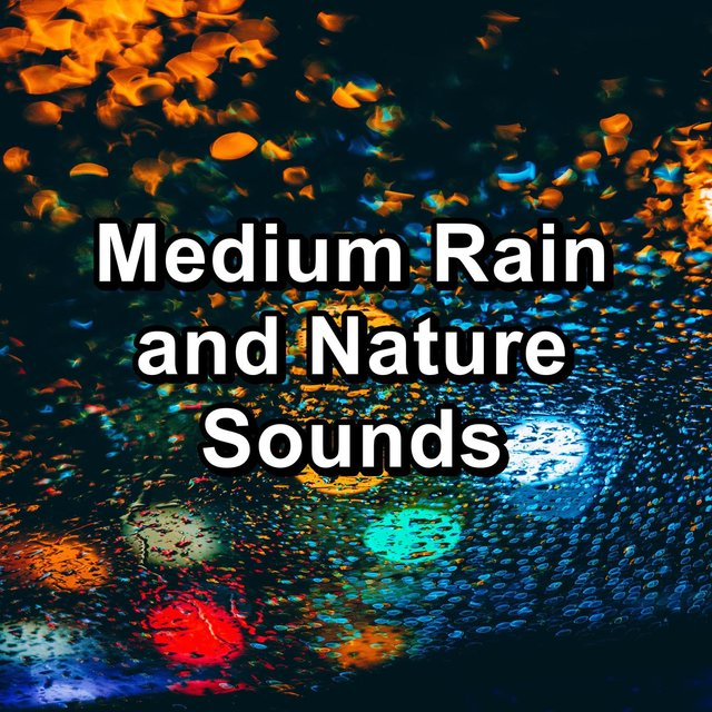 Medium Rain and Nature Sounds