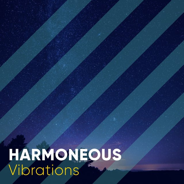 # 1 Album: Harmoneous Vibrations