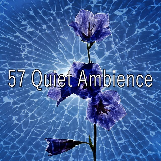 57 Quiet Ambience