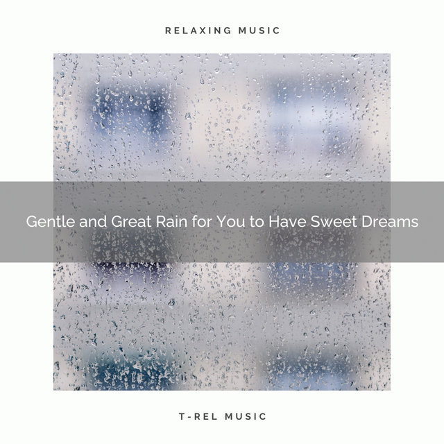 2020 Best: Gentle and Great Rain for You to Have Sweet Dreams