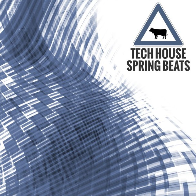 Techhouse Spring Beats