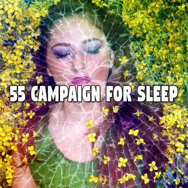 55 Campaign for Sleep